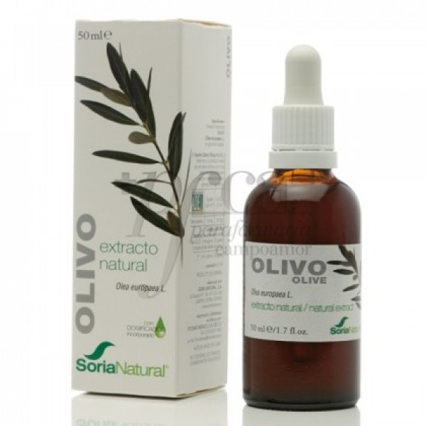 OLIVO EXTRACTO XXI 50 ML 04451